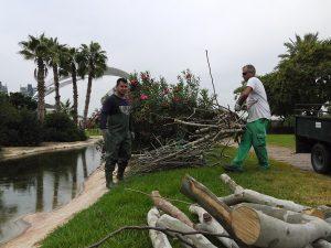Equipo de Bob Verschueren trabajando en el montaje de las obras en el río Turia
