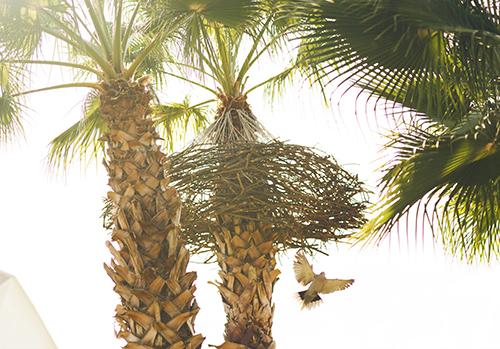 """Instalación """"Hanging Nest"""", creada con ramas entrelazas y cuerda de lino"""