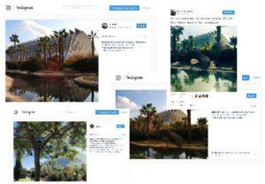 """Fotografías realizadas por los visitantes a las obras de """"Ecos de la memoria"""""""